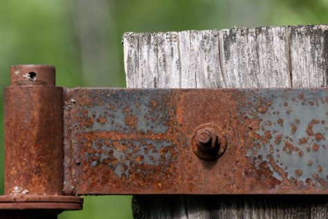 Hinge and Post, Eakin Creek Road - ©Derek Chambers