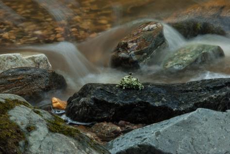 Chase Creek - ©Derek Chambers