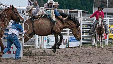 Bronc Rider, Princeton Rodeo - ©Derek Chambers