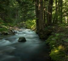 Eakin Creek Canyon _DSC5794- ©Derek Chambers