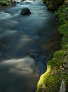Eakin Creek Canyon _DSC5798- ©Derek Chambers