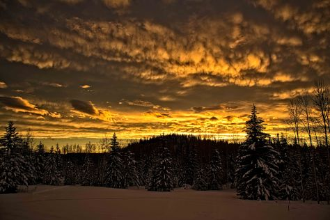 Eagleridge Winter Sunset - ©Derek Chambers
