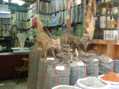 Stall, Khan al Khalili Market, Cairo - ©Derek Chambers
