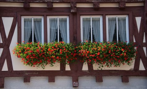 Miltenberg - Window Detail - ©Derek Chambers