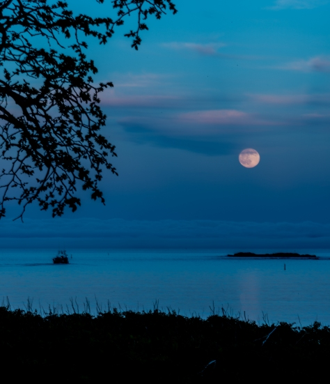 Full Moon Rising At Louisbourg - ©Derek Chambers