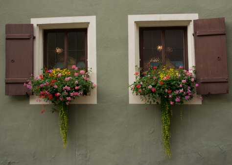Rothenberg - Window Detail - ©Derek Chambers