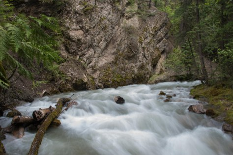 Sinclair Creek - ©Derek Chambers