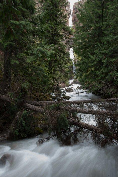 Sinclair Falls, Radium Hot Springs - ©Derek Chambers