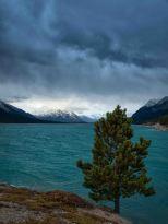 Abraham Lake - ©Derek Chambers