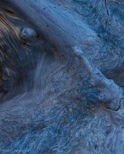 Swirls - ©Derek Chambers