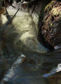 Down the Drain - DSC4005- ©Derek Chambers