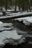 Downstream - _DSC4952- ©Derek Chambers