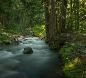 Eakin Creek Canyon - ©Derek Chambers