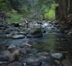 Eakin Creek Canyon Provincial Park