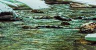 Eakin Creek Canyon -20141208-Glow - ©Derek Chambers