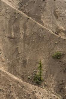 Farwell Canyon - ©Derek Chambers
