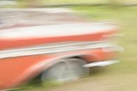 In Motion? - ©Derek Chambers
