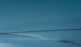 Simplify - Grand Coulee Reservoir _DSC7187 - ©Derek Chambers