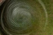 Spiral Wheel- ©Derek Chambers