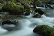 Eakin Creek Canyon - DSC4084 20140810- ©Derek Chambers