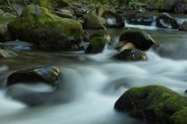 Eakin Creek Canyon - DSC4084 20140810- ©Derek Chambers