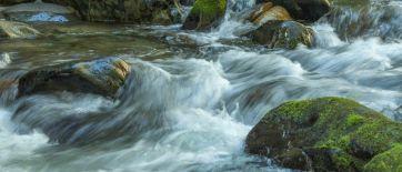 Eakin Creek Canyon - DSC4087 20140810- ©Derek Chambers-2