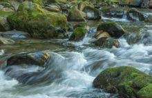 Eakin Creek Canyon - DSC4087 20140810- ©Derek Chambers