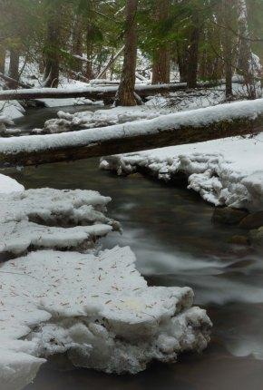 Downstream DSC4952- ©Derek Chambers