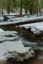 Downstream Warmer DSC4952 - Glow - ©Derek Chambers