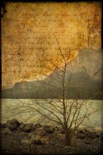 Abraham Lake - Layered and Textured - ©Derek Chambers