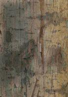 Constructed Texture 2 - ©Derek Chambers