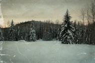 Upper Meadow at Eagleridge - ©Derek Chambers