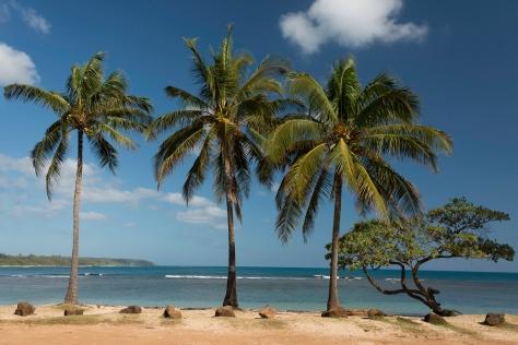 Classic Hawaii _DSC5089- ©Derek Chambers