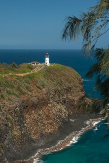 Lighthouse and Breaching Whale _DSC5117- ©Derek Chambers