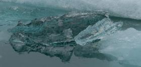 Ice Hearts - ©Derek Chambers