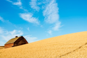 Another Red Barn! - Palouse - ©Derek Chambers