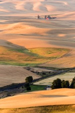 Gentle Morning - Palouse - ©Derek Chambers
