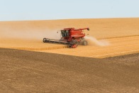 Harvest Time in the Palouse - ©Derek Chambers
