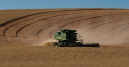 Harvest Time - Palouse - ©Derek Chambers
