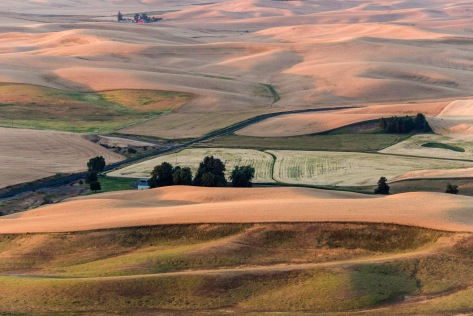 Here Comes the Sun - Palouse - ©Derek Chambers