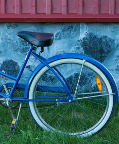 The Blue Bicycle - ©Derek Chambers