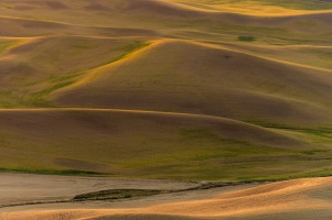 The Hills Are Aglow - Palouse - ©Derek Chambers