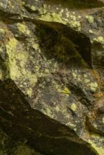 Rock Decor (Lichen), Eakin Creek Canyon Provincial Park _DSC1633- ©Derek Chambers