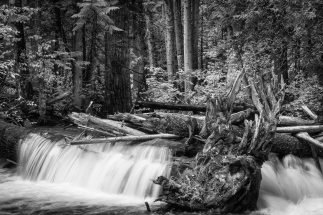 Lower Log Jam in B&W, Eakin Creek Canyon Provincial Park _DSC1663-1367-1368-1372- ©Derek Chambers