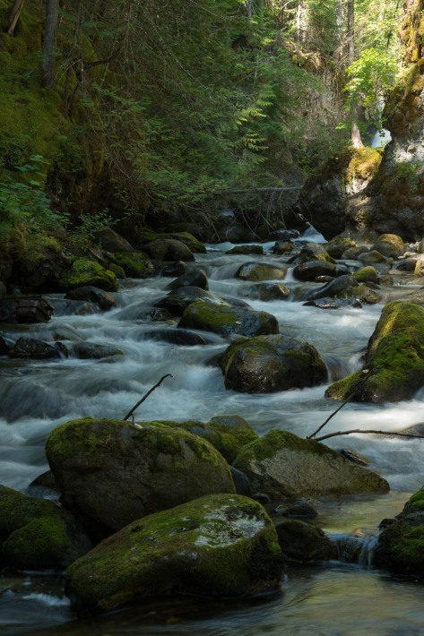 Eakin Creek Canyon and Falls - DSC4091- ©Derek Chambers