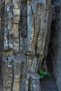 Layers of Rock, Allstones Creek, Abraham Lake - ©Derek Chambers