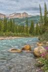 Siffleur River, Kootenay Plains - ©Derek Chambers