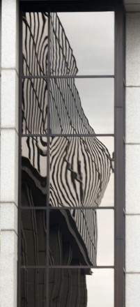Reflections Everywhere - ©Derek Chambers