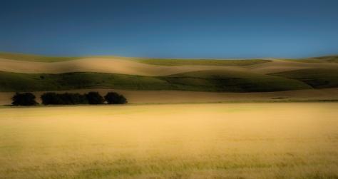 Palouse Panorama - ©Derek Chambers