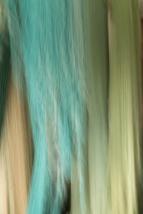 Impressions - Hanging Nets - ©Derek Chambers